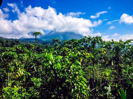 Reise nach Bali - Beste Reisezeit Bali - Tina Engler--8