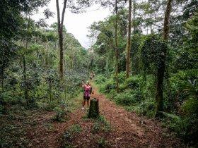 Ziplining in Laos - Jörg Baldin (2 von 8)