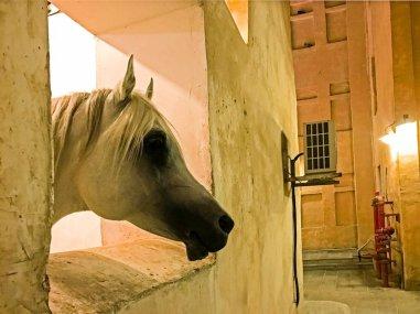 Stopover in Katar - Jutta Lemcke (4 von 5)