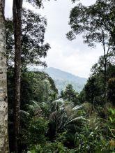 Malaysia-Reisereportage-Elisabeth-Konstantinidis-Breitengrad53-MG_2159 2