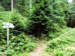ziplining fichtelgebirge - ochsenkopf - wilfried geiselhart-Ochsenkopf Breitengrad53_11