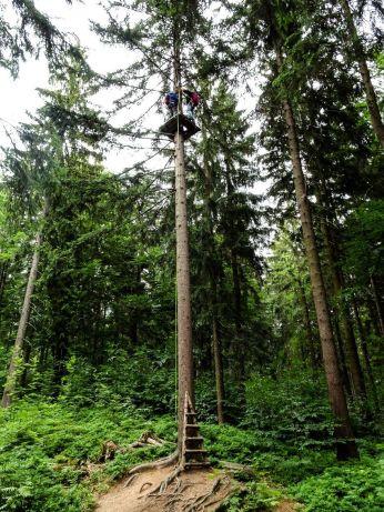 ziplining fichtelgebirge - ochsenkopf - wilfried geiselhart-Ochsenkopf Breitengrad53_6