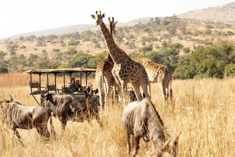 Urlaub im Maerz - Südafrika
