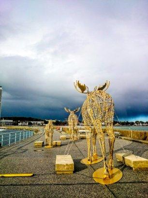 Urlaub in Travemuende Luebeck Anja Steinbuch 8 - Travemünde - La Belle Epoque an der Ostsee