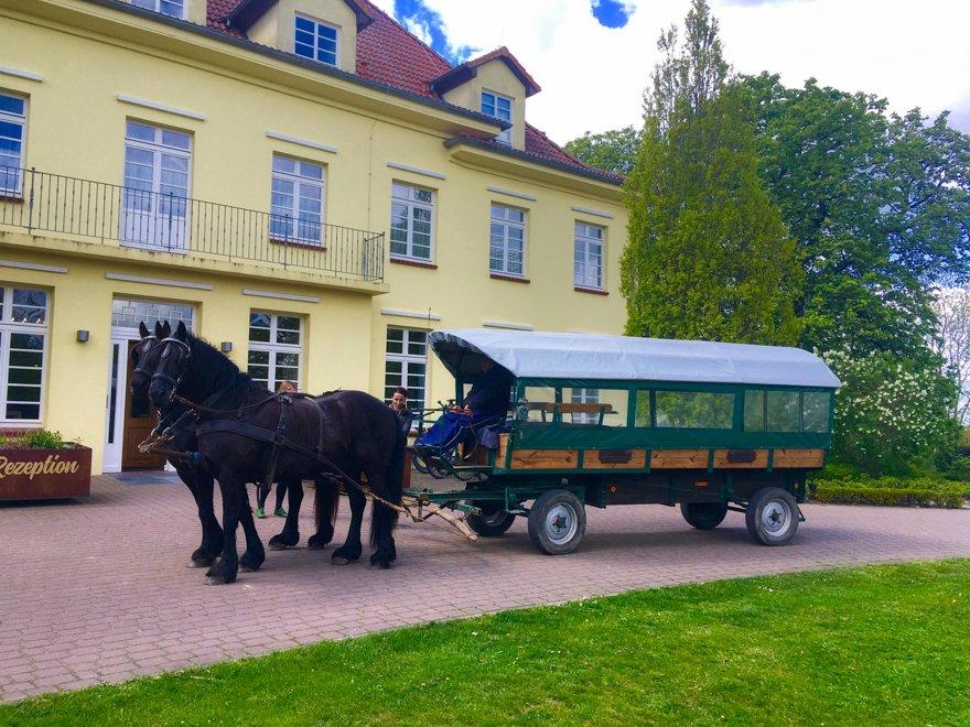 Reiterurlaub Mecklenburg-Vorpommern