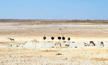 19Liane-Ehlers-Africanexplorer-breitengrad53