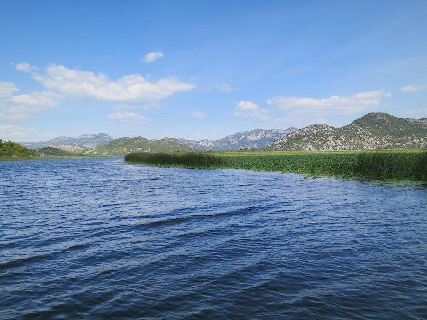 Der Skardarsee ist der größte See des Balkans