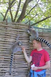 Manchmal treffe ich auch auf gefährliche Tiere