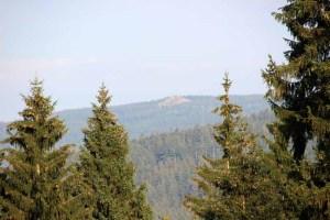 Blick zur Wolfswarte im Harz