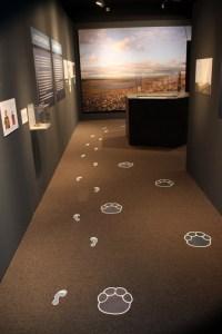 Mein Foto ist direkt am Eingang zur Ausstellung aufgehängt