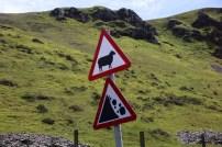 Ein Verkehrsschild mit einem Schaf warnt vor Schafen in Wales