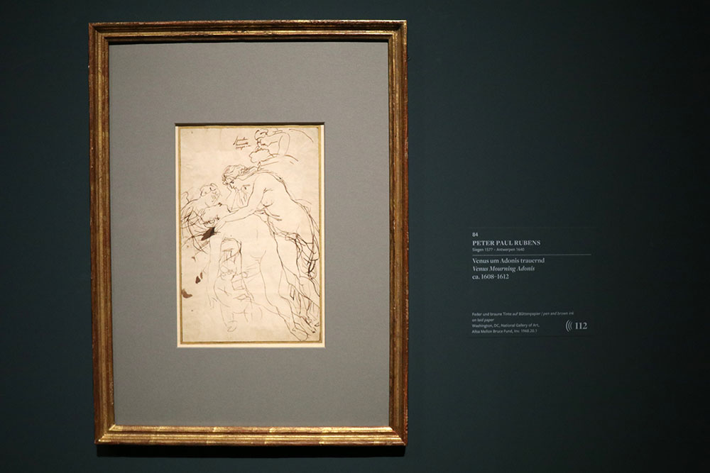 Zeichnung von Peter Paul Rubens - Venus um Adonis trauernd, ca. 1608-1612