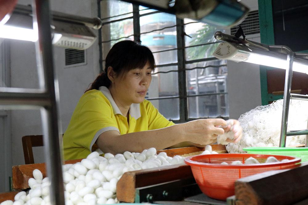 Man kann den Arbeiterinnen bei der Seidenproduktion über die Schulter schauen