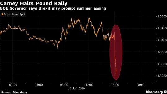 carney-pound