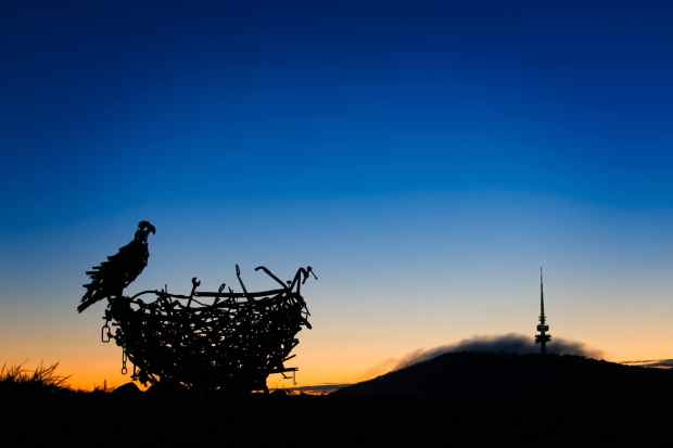 The Eagle's nest at the Canberra arboretum