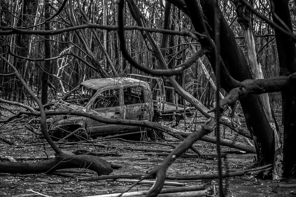 A burnt-out car on a property surrounded by national park