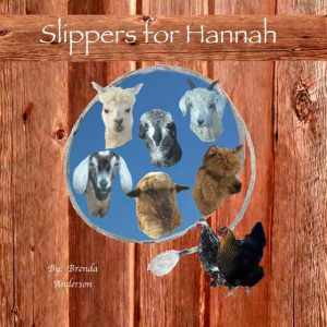 Slippers for Hannah ~ a story about friendship and love