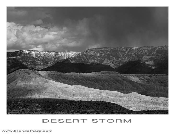 Storm Light in Utah's Desert Lands