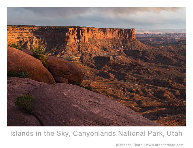 Classic Views in Canyonlands