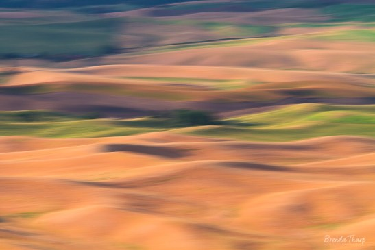 Motion-Blur Abstract of Fields, Washington.
