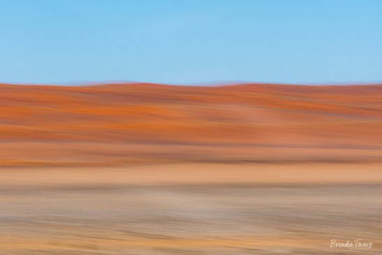 Abstract blur of landscape