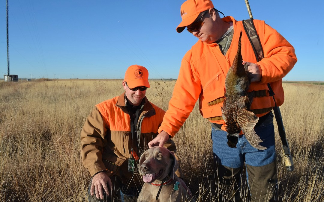 Big bucks for big bucks (and pheasants)