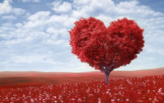 A red heart-shaped tree amid a landscape of red flowers