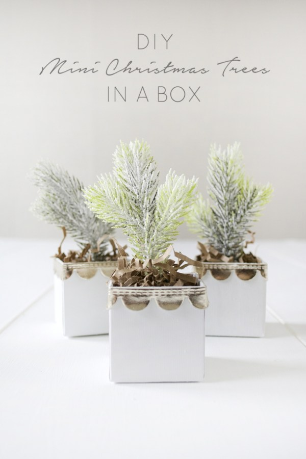 DIY Mini Christmas Trees in a Box