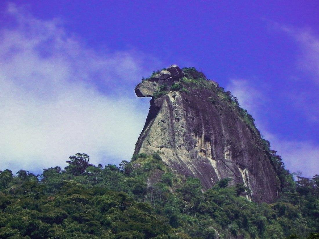 Pico do Papagaio Ilha Grande - Brésil Aventure