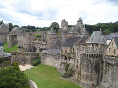 fougere_1