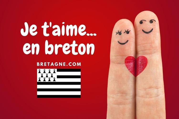 je t aime en breton passer la saint