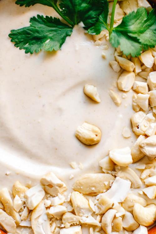 close up on cashew salsa