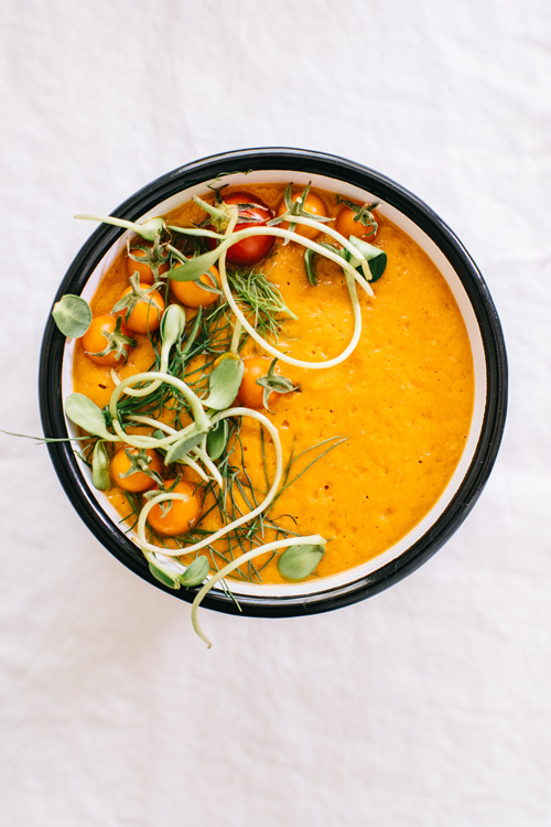 single bowl of tomato fennel soup