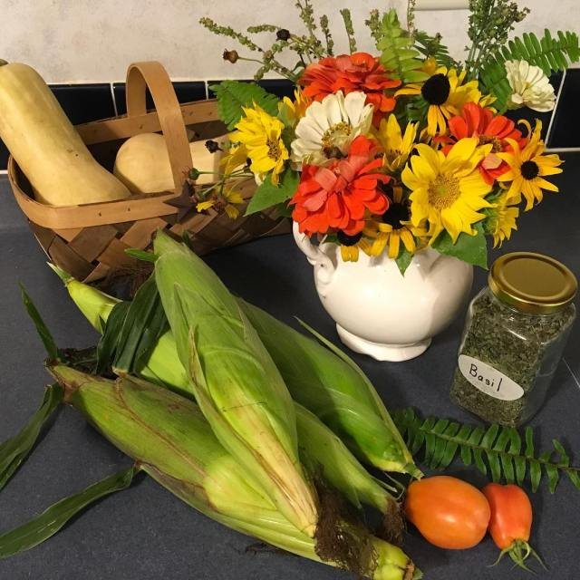 Homegrown corn wildflowers sunflower tomatoes crushedbasil butternut