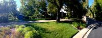 Lawn Rejuvenation