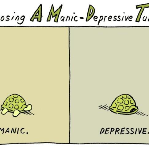 """""""Diagnosing a Manic-Depressive Turtle"""""""