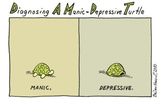 """Diagnosing a Manic-Depressive Turtle"""