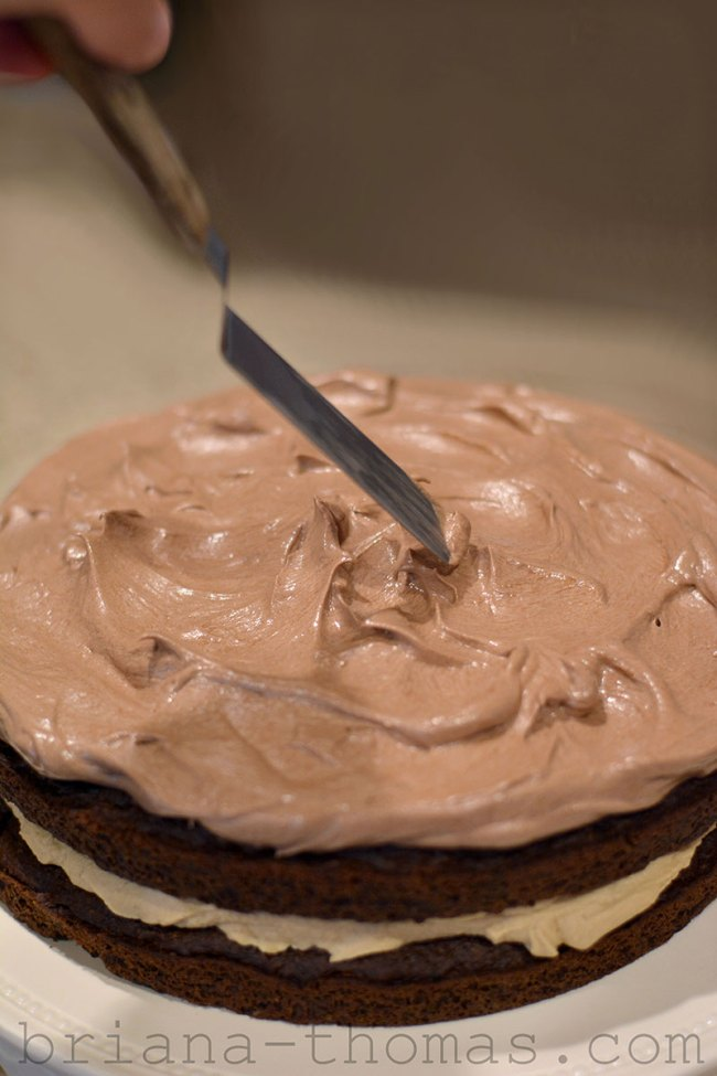 Basic Chocolate Frosting