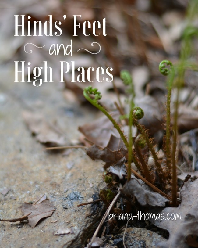 Hinds' Feet and High Places