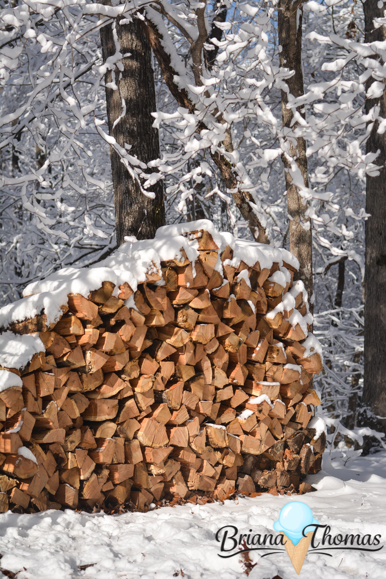 """Here are some pictures of what I like to call """"the great South Carolina blizzard of 2017."""" We got about 4 inches of snow and really enjoyed it - for awhile."""
