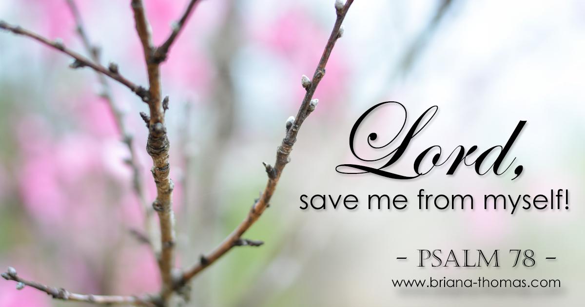Save Me From Myself! {Psalm 78} | Briana Thomas