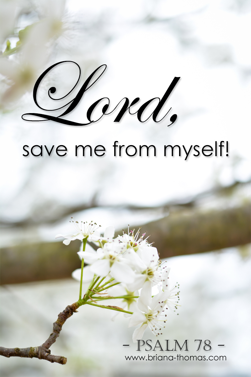 "As you read this excerpt from Psalm 78, I hope you are moved to pray, ""Lord, save me from myself and my own desires!"" He sees the big picture."