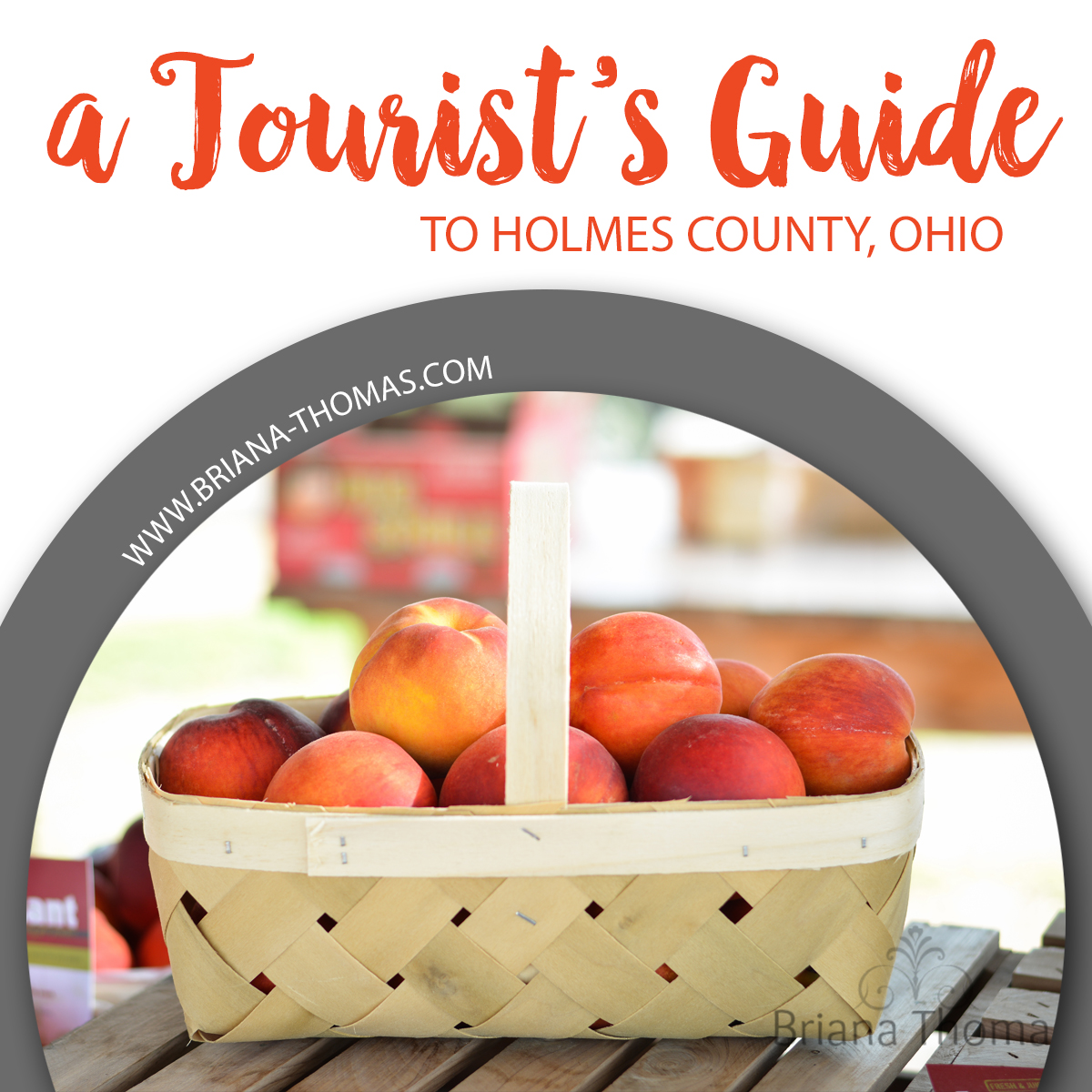 Check out today's post for a tourist's guide to Holmes County, Ohio! Restaurants with classic Amish-style food, discount grocery stores, fabric stores, etc.