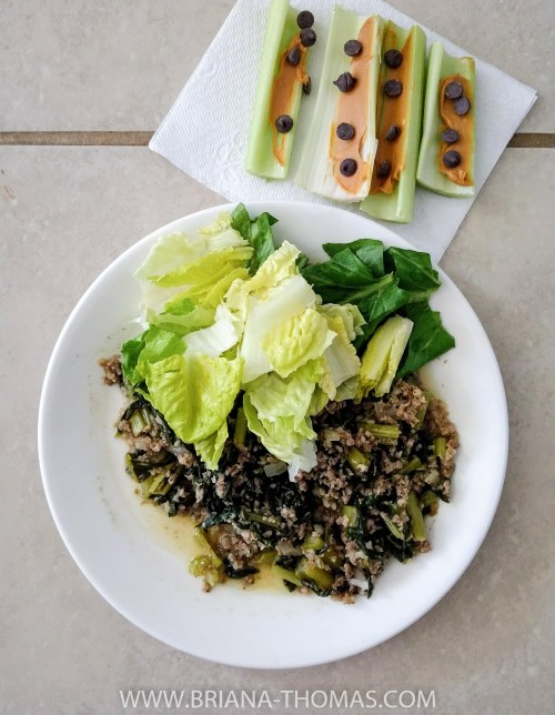"""I've been doing a lot of recipe testing for my next cookbook lately, and today's """"What's on My Plate?"""" post will give you some sneak previews! Everything is Trim Healthy Mama friendly."""