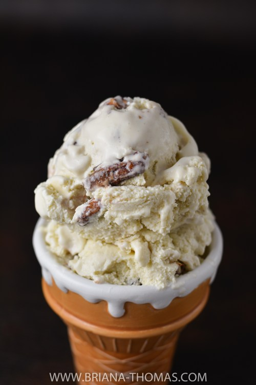 Butter Pecan Frozen Custard - Convenient Food