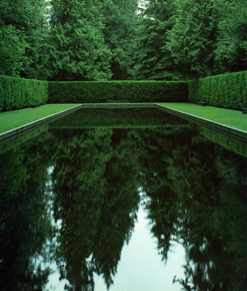 Green Reflection, Bainbridge Island, Washington