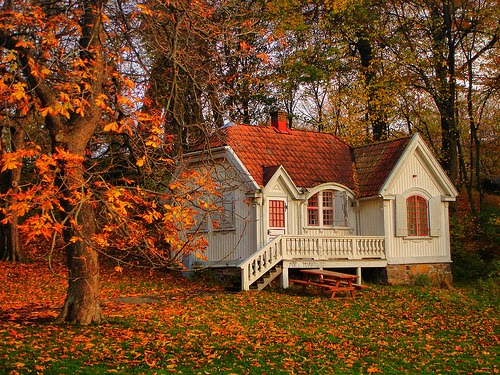 Autumn Cottage, Gothenburg, Sweden