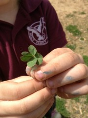 Katie Beth and Four Leaf Clover