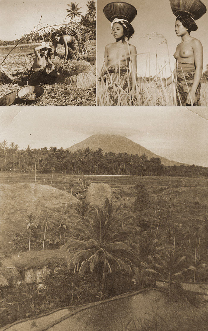 The work of Arthur Fleischmann in Bali 1930's - compilation by Brian Cassey