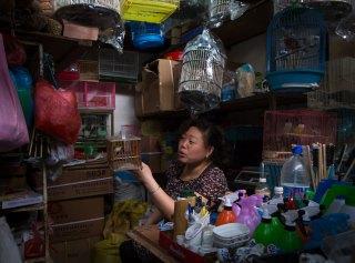 Woman, Bird Market, Shanghai, China (IMG_3229)